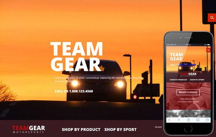 Team Gear a Flat ECommerce Bootstrap Responsive Web Template