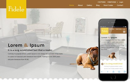 Fidele a Animal Category Flat Bootstrap Responsive Web Template