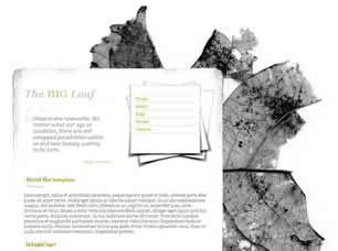 The Big Leaf Free CSS Template