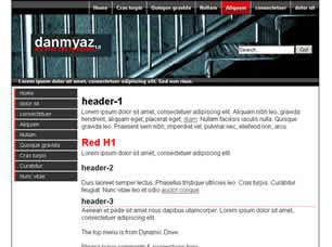 Danmyaz 1.0 Free CSS Template