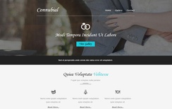Connubial a Wedding Category Email Template