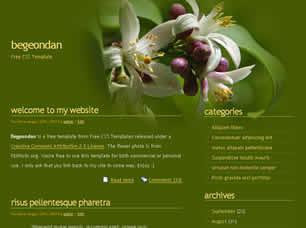 Begeondan Free CSS Template